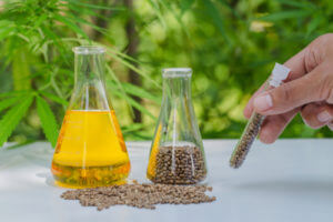 Hemp Massage Oil